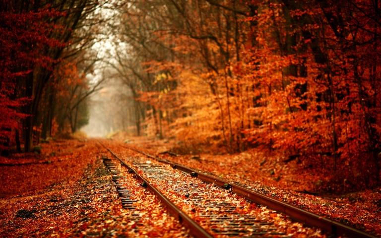 railway-autumn